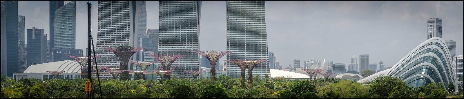 Singapore Gluck 091