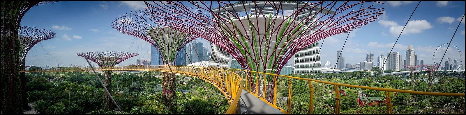 Singapore Gluck 037