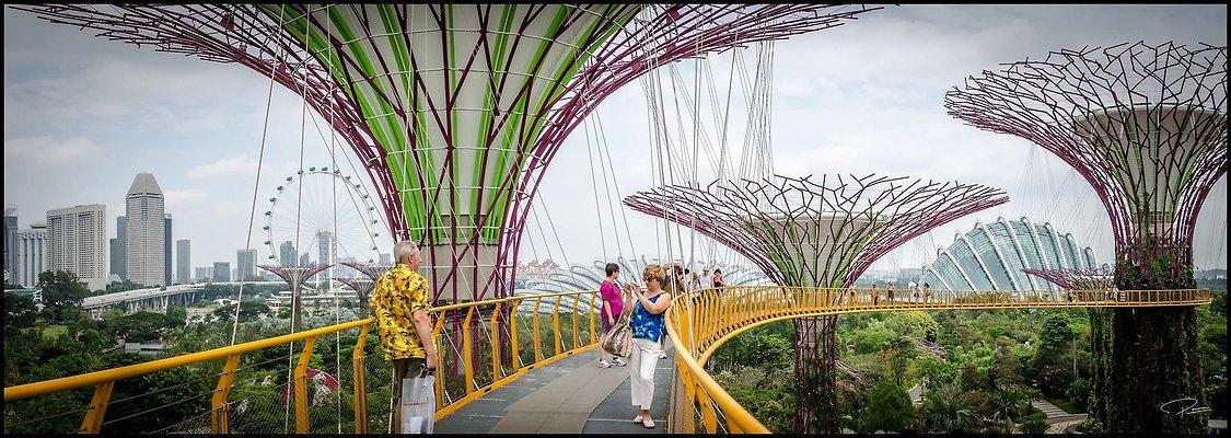 Singapore Gluck 048