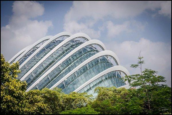 Singapore Gluck 070