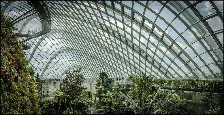 Singapore Gluck 058