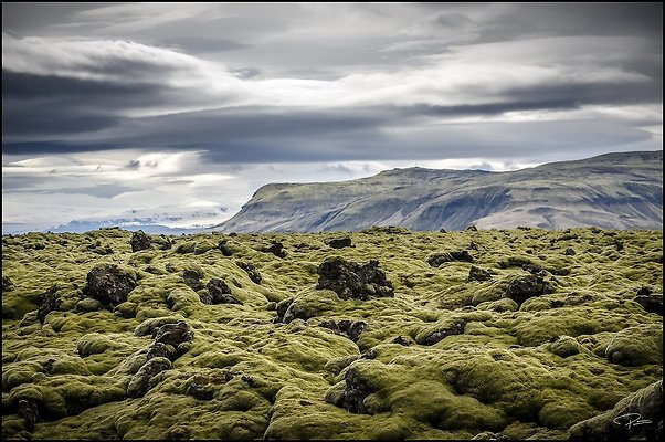Iceland May 2017 PG 1685