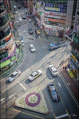 Korea Sajic 2017 PG 077