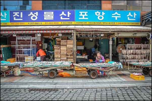 Korea Jagalchi 2017 PG 034