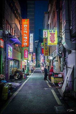 Korea Jagalchi 2017 PG 355