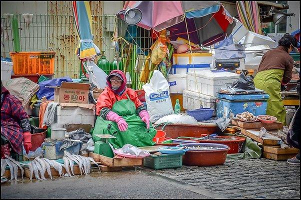 Korea Jagalchi 2017 PG 011