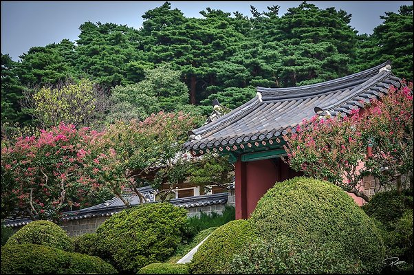 Korea Gangwon GangneungOjukheon 2017Sept09 PG 025