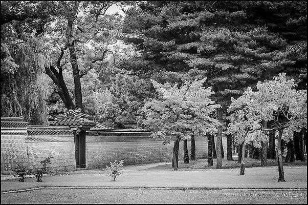 Korea Seoul GyeongBokGung 2017Sept06 PG 170