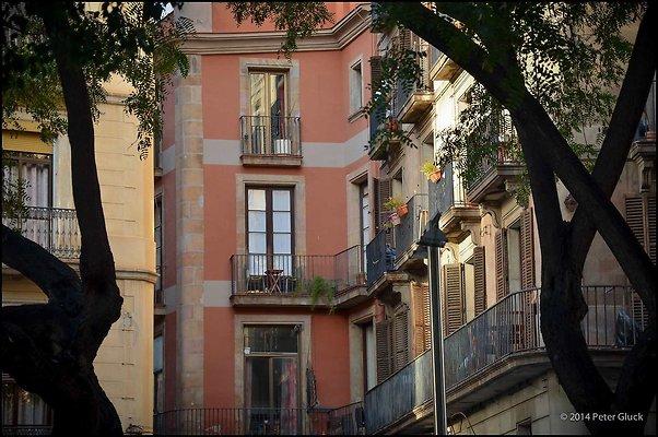 Barcelona LaRamblaArea 2014 02 05 PG 057