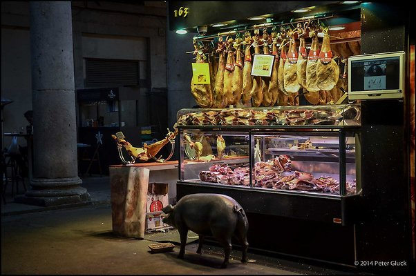 Barcelona LaRamblaArea 2014 02 05 PG 120