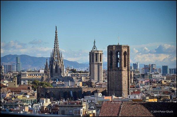 Barcelona Raval and Rambla 2014 02 05 PG 006