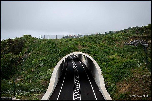 Tenerife 095