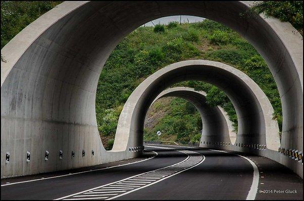 Tenerife 096