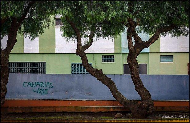 Tenerife 013