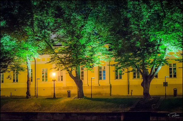 Finland  Turku 2018 Aug18 PG 044
