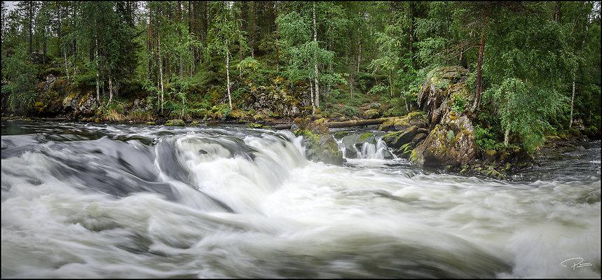 Finland  Kuusamo OulankaNatlPark 2018 Aug14 PG 028