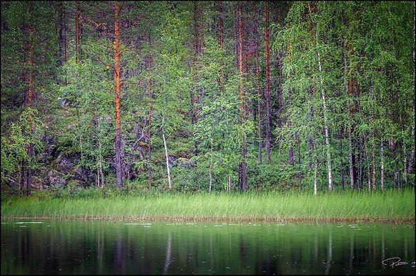 Finland  Kuusamo OulankaNatlPark 2018 Aug14 PG 039