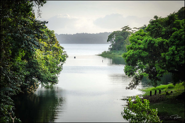 Panama Panama CanalRailway 2020 Feb26 PG 117 PG