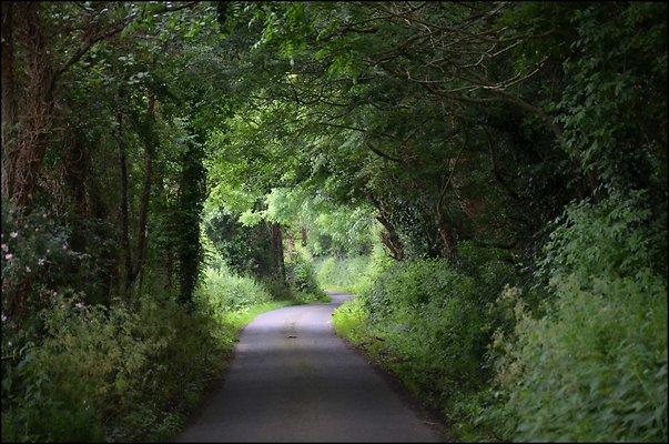 Ireland CoAntrimArea 2014 06 13 PG 091