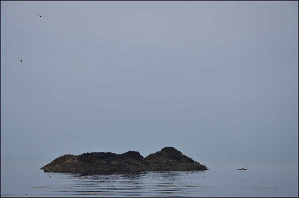 Ireland Balintoy 2014 06 13 PG 026