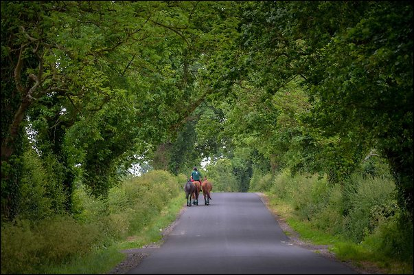 Ireland CoAntrimArea 2014 06 13 PG 067