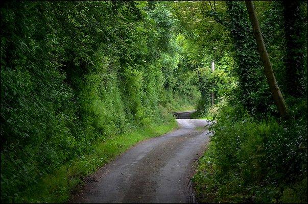 Ireland CoAntrimArea 2014 06 13 PG 068