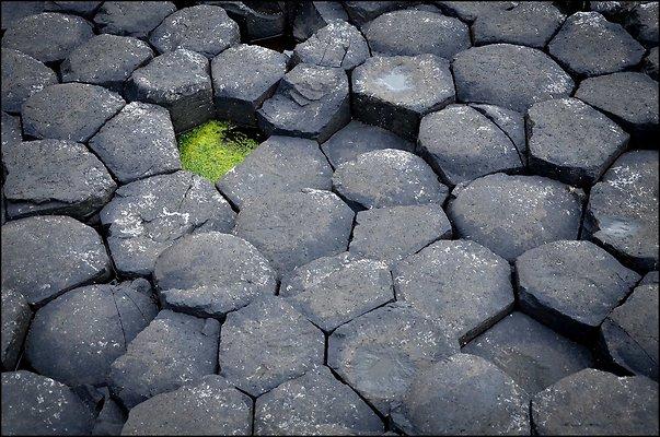 Ireland GiantsCauseway 2014 06 13 PG 062