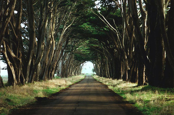 mci road